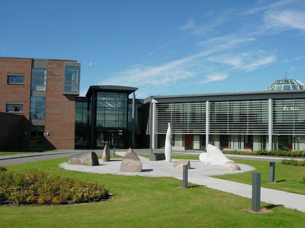 NYBYGG: Kunnskapsdepartementet har gitt grønt lys til å starte prosjektering av bygg ved Nord Universitet i Bodø. Foto: Lars Røed Hansen