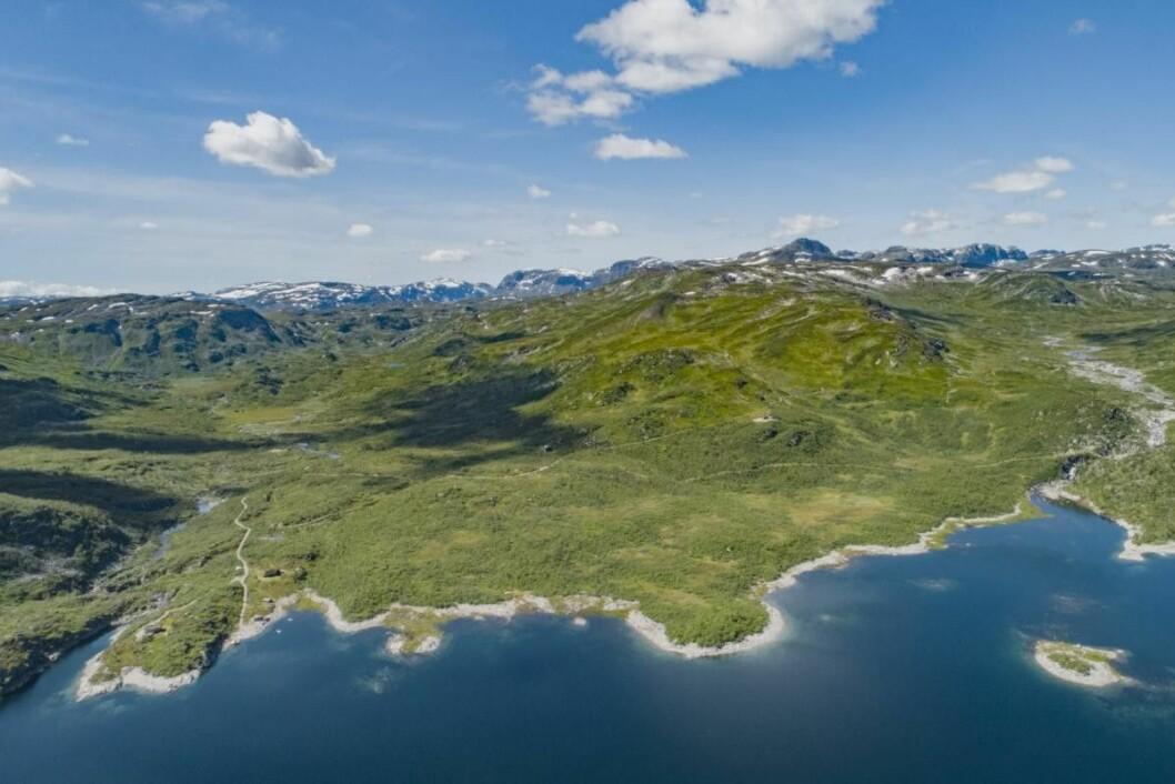 SJELDEN VARE: 40 kvadratkilometer fjelleiendom er nå ute for salg. Foto: Koppang Landbruksmegling
