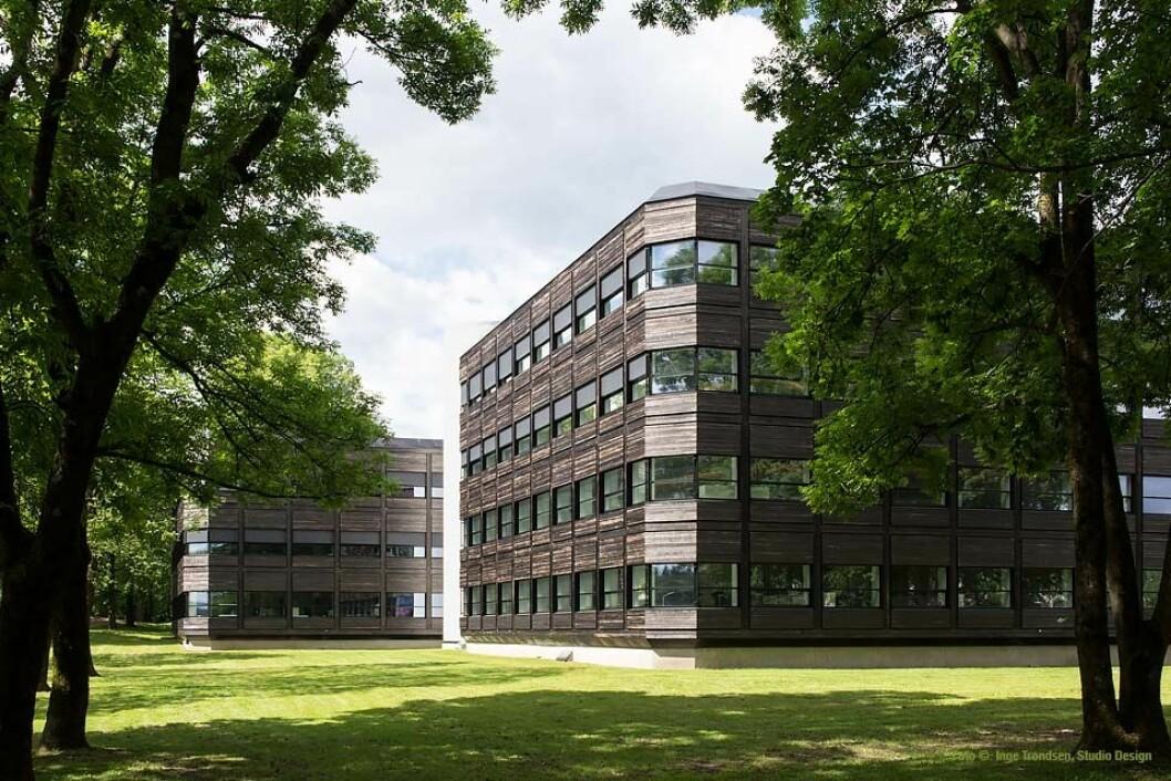 VERDI: I takt med at samfunnet blir mer bærekraftig, øker også merverdien av grønne bygg. Illustrasjonsfoto: Powerhouse Kjørbo/Inge Trondsen.