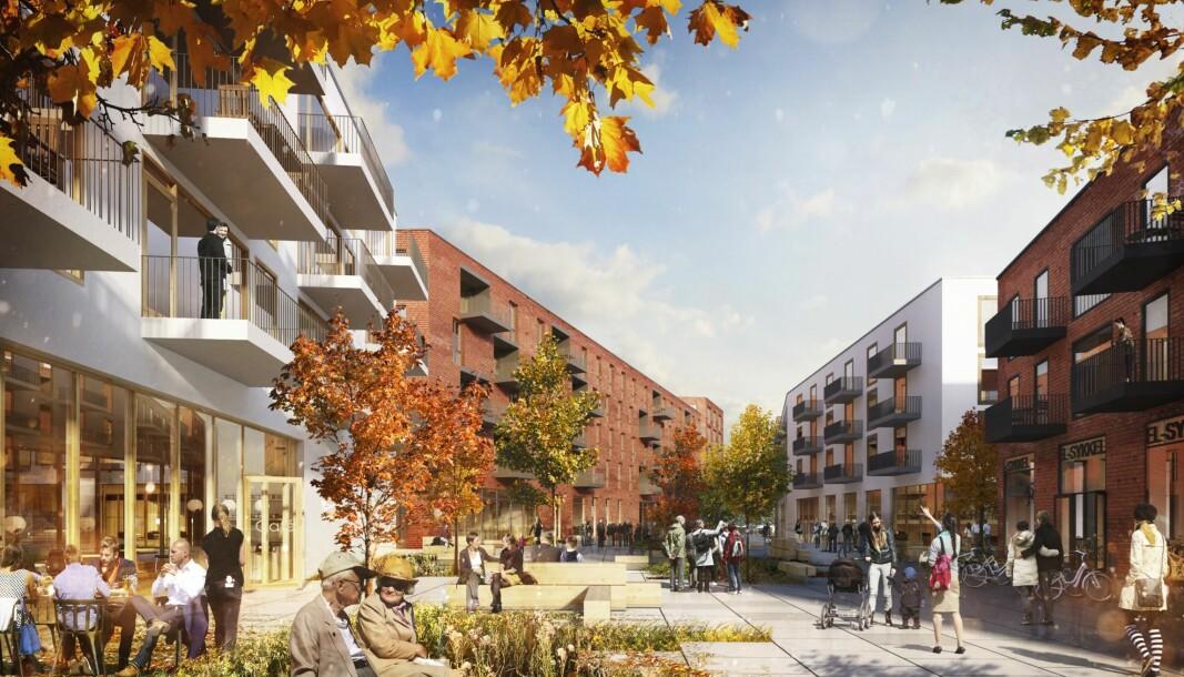 BOLIG OG NÆRING: I tillegg til boliger ønsker grunneierne å oppføre 3 420 kvadratmeter næringsarealer.