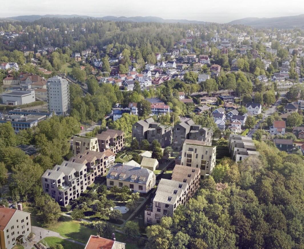 160 BOLIGER: I det opprinnelige forslaget ble det skissert 160 boliger.