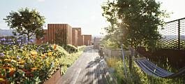 Fra bilby til bærekraftig boligby