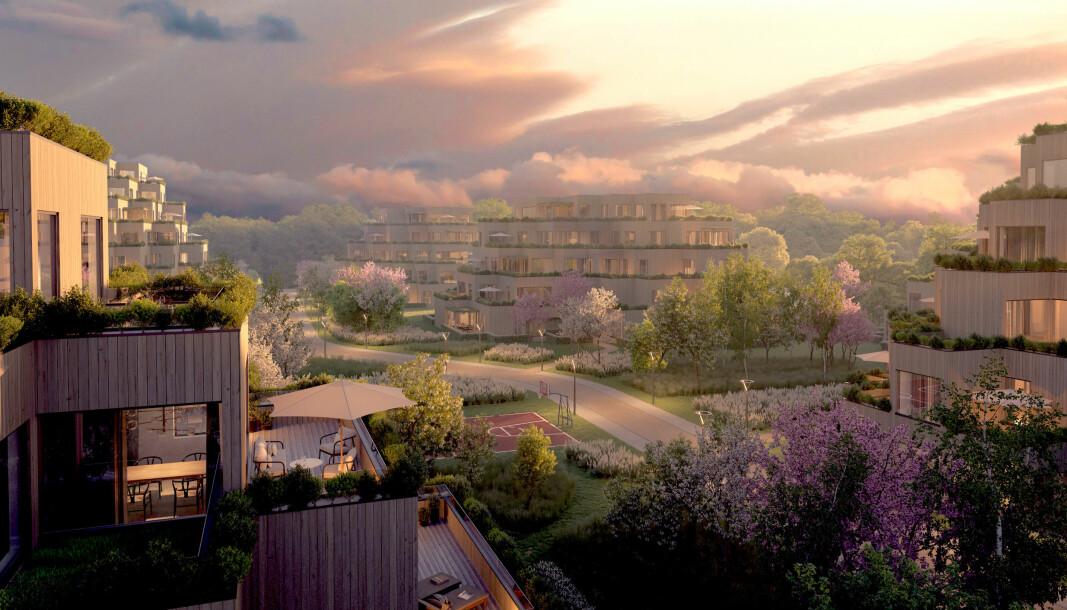 BOLIGER: Denne skissen viser hvordan det nye boligfeltet kan bli.