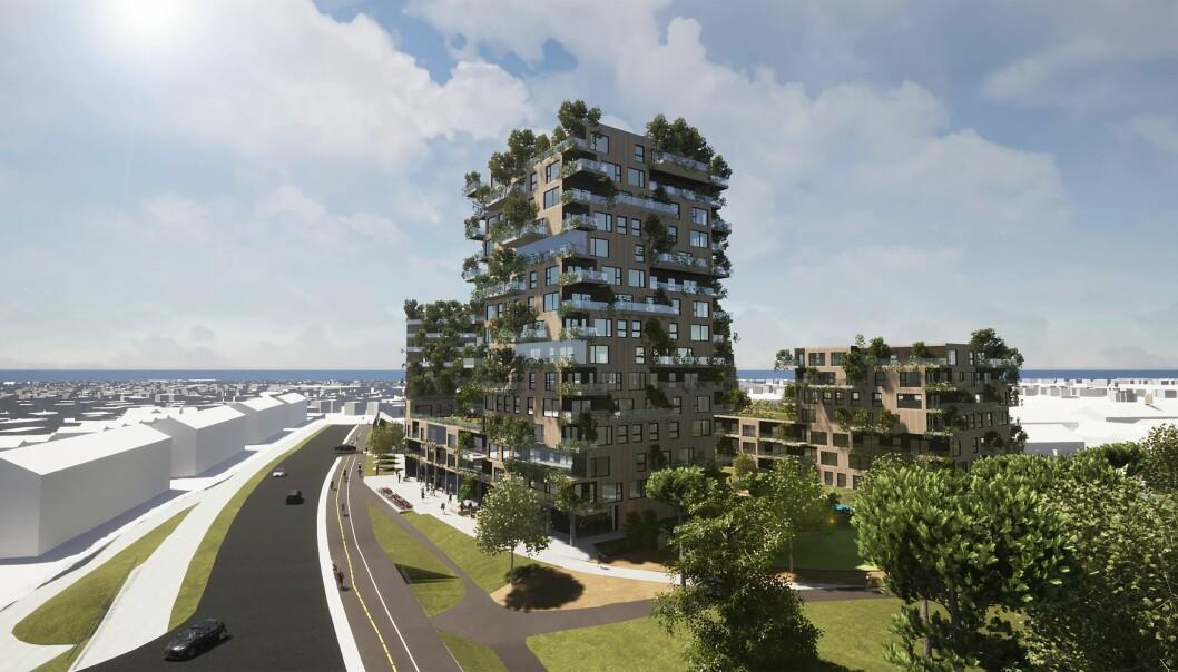 SKOG: Dette prosjektet skal kles med skog på ytterveggene.