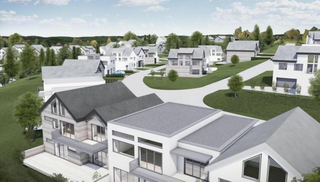 SMÅHUS: Sånn ser utviklerne for seg det nye boligfeltet.