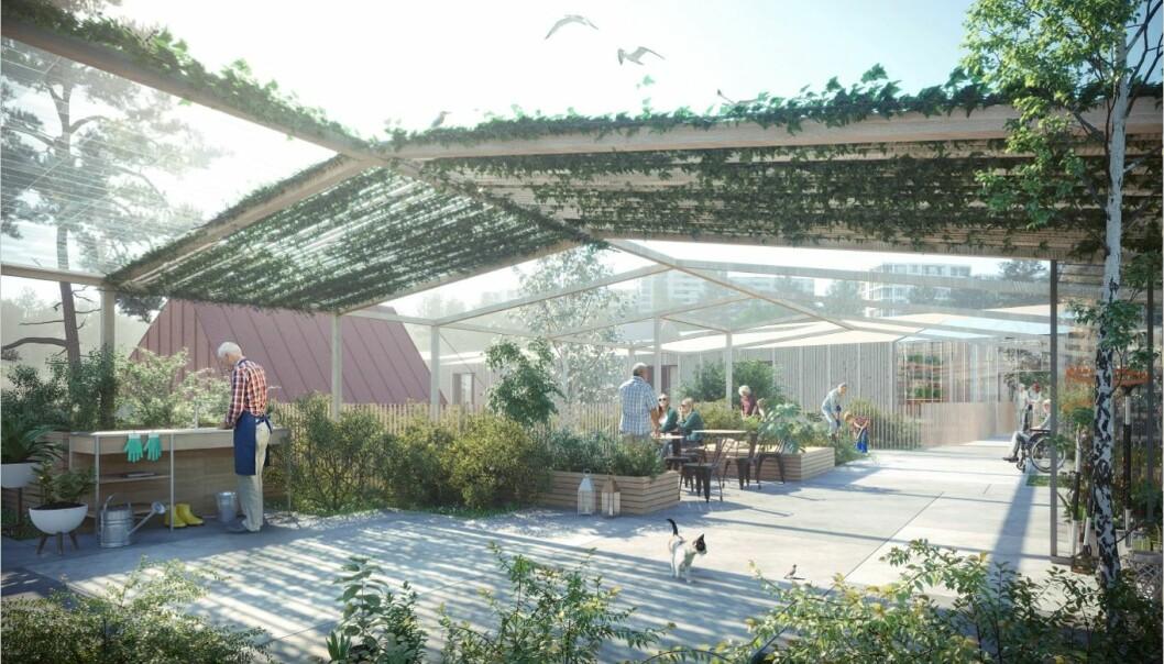 OM TO ÅR: Hagebyen skal være klar til prøvekjøring i 2023.