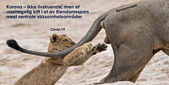 Covid var et ubehagelig bitt for Eiendomsspar (+)