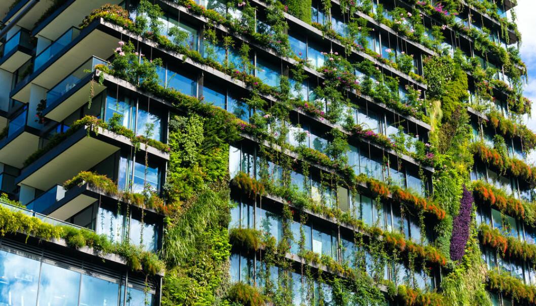 GRØNT FOKUS: En ny pris skal gi mer fokus på miljø og bærekraft.