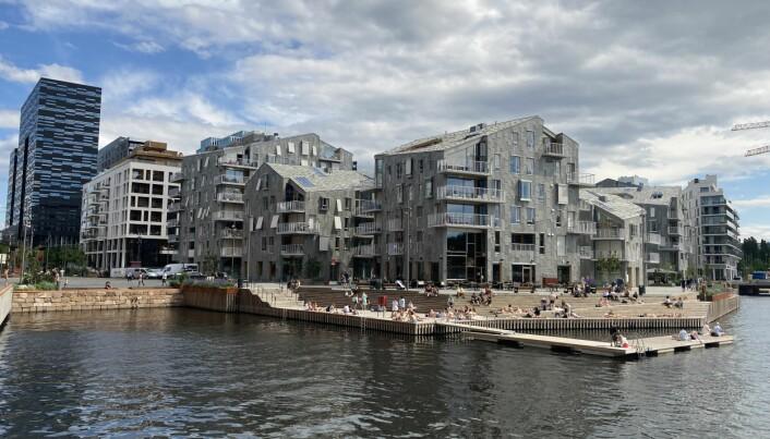 VANNKUNSTEN: Boligprosjektet er inspirert av kanalene i Venezia.