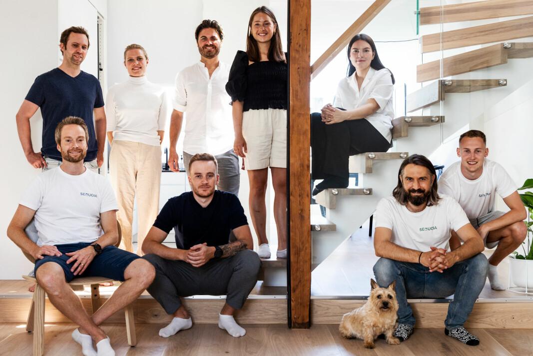 TEAM SEQUOIA: Bak fra venstre: Andreas Mjelde, Frida Nilsen, Knut Olav Klokk, Dorte Narum og Helene Sellevoll Karlsen. Foran: Ulf Øyvind Lund, Erik Harstad, Per Elling Sylte og Sander Djupvik.