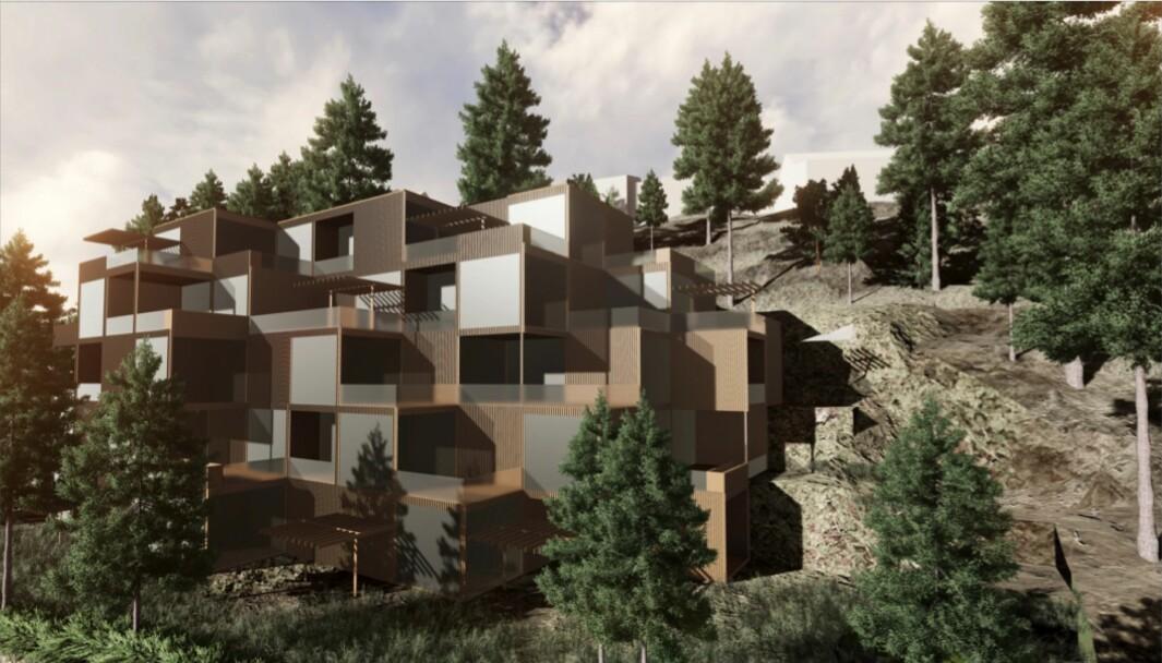 TILPASSES: Målsettingen er at boligbebyggelsen i best mulig grad skal tilpasse seg eksisterende terreng.