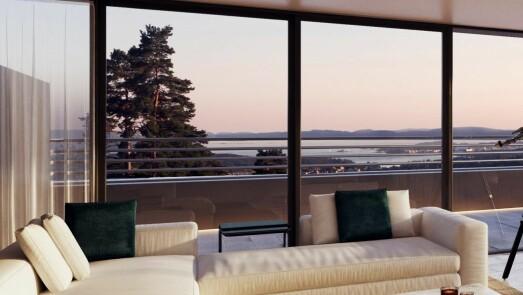 Snappet eiendom i Oslo vest. Ville ikke at eplehageutbygger skulle ødelegge for luksusprosjekt