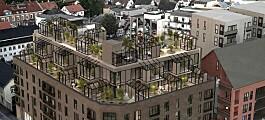 Satser på utleieleiligheter med drivhus på taket og orangeri i bakgården (+)