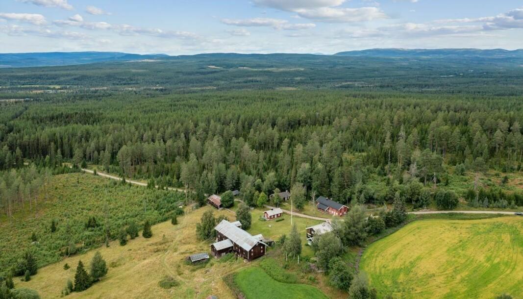 BOLTREPLASS: Så store skogseiendommer er svært sjelden vare i markedet.