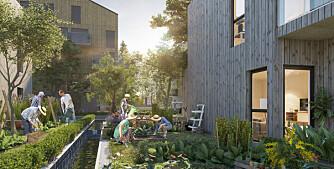 Har høye ambisjoner om å skape Innlandets mest miljøvennlige boligområde