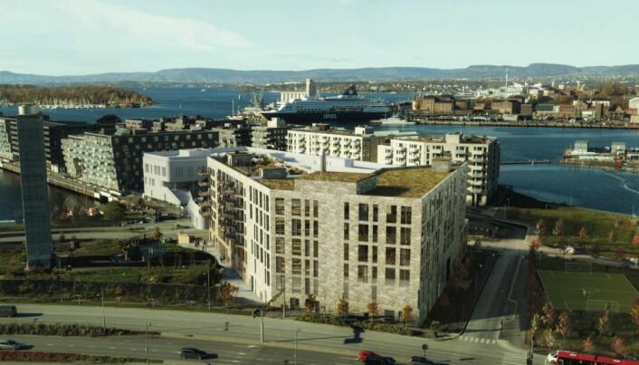 Statens vegvesen reiser innsigelse mot prosjekt i Lohavn